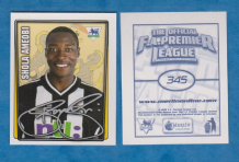 Newcastle United Shola Ameobi Nigeria 345